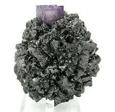 Lustrous Sphalerite with a perfect fluorite perched at top. Elmwood mine 12.5 cm