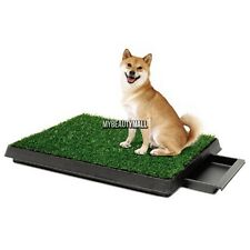 2015 Petzoom Indoor Dog Pet Potty Training Toilet Pad Grass Surface Pet Park Mat