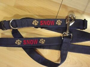 Custom Dog Collar and 6' Leash Personalized with Name Phone Number & Design