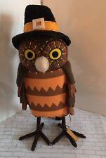 Featherly Friends Barney Fabric Bird Figurine Target Thanksgiving Decor Pilgrim