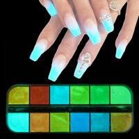 12 Nail Art Glitter Powder Ultra Fine Glow in the Dark Pigment Tips Decoration