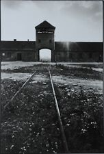 Elliott Erwitt Photo Kunstdruck Art Print 38x53cm Auschwitz Poland 1964 KZ Polen
