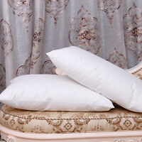 King Size 100% Goose Down Pillow (20X36inches), 2000TC Egyptian Cotton outshell