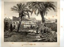 Stampa antica ROMA COLOSSEO visto dal colle Palatino 1876 Old Print Rome