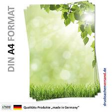 25 Blatt Motivpapier-5092 DIN A4 grüne Wiese mit Birke  Laub Briefpapier