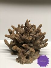 "Ceramic Reef Rock Nano Coral (8""X 7"")"