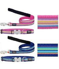 RED DINGO Stripe Dog / Puppy Collar & Lead | Sizes XS-LG | Adjustable BLUE PINK