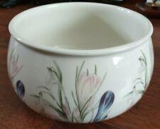 The Botanic Garden Portmeirion Rare Pottery Flower Pot