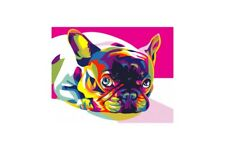 PAINTING BY NUMBERS FRENCH BULLDOG A4 29,7X21CM TA40111