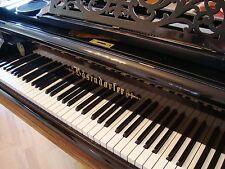 BÖSENDORFER 155cm Flügel Stutzflügel Grand Piano Pianofort Klavier Salonflügel