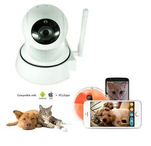 Telecamera IP WIFI visione remota animali con comunicazione vocale - ruotabile