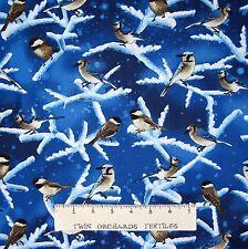 Christmas Fabric - Chickadee on Winter Branch Blue - Timeless Treasures YARD