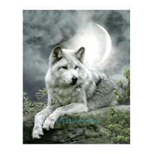 Wolf 5D Diamond Painting Diamant DIY Kreuzstich Stickerei Malerei Bilder 30x40cm