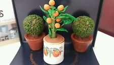 Reutter Porcelain Dolls House 1:12th Scale Orange Tree With Box Trees 14758 New