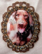 Red Doberman Dog Portrait Cameo Brass Brooch Or Pendant Rhinestones Miss-art