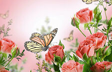 Framed Print - Pink/Red Roses with Butterflies (Flowers Insects Picture Poster)