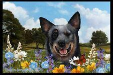 Summer Floor Mat - Blue Australian Cattle Dog 39072