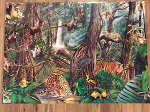 2 4 6 8 Sheets of Rainforest Jungle Animals Luxury Birthday Wrapping Paper