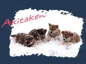 AKITA PUPPIES IN THE SNOW CHARMING DOG GREETINGS / NOTE CARD