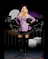Sexy Adult Halloween Frisky Kitty Kat Pouncer Costume
