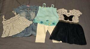 Baby Girl Clothes Bundle 12-18