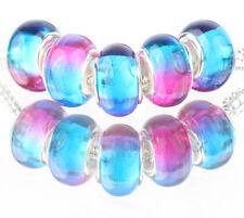 5pcs SILVER MURANO LAMPWORK Beads Fit European Charm Bracelet DIY #F508