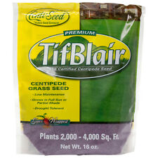 TifBlair Centipede Grass Seed 1 Lb Plants 2k - 4k Sq Ft For Sun or Partial Shade