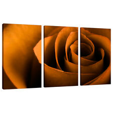 Set of Three Large Orange Floral Canvases Art Prints Living Rooms 3141
