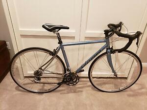 2003 Litespeed Bella Titanium Road Bike Medium 53cm FRAMESET FRAME + FORK ONLY!!