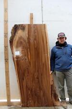 English Elm Rustic Slab Headboard Live Edge Table Raw Wood Countertop Bar 4527x1