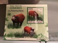 Comoro Islands 2009 Hogs mint never hinged stamp sheet R24073