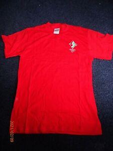 Gildan Swindon Town Football Club short sleeve cotton T Shirt chest 36 BNIP