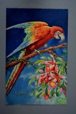 R&L Postcard: Brightly Coloured Parrot Bird, Painted Canvas Type Effect