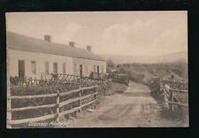 Wales Cardiganshire PENLLWYN Dolpandy 1945 PPC
