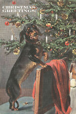 Dachshund Dog Trims Christmas Tree 1910 - LARGE New Blank Christmas Note Cards