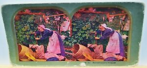 Antique Stereoview Card - #18 (b) Eavesdroppers Dropped