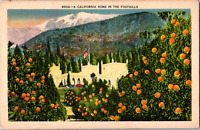 Vintage 1930's Through Orange Trees California Home in the Foothills CA Postcard