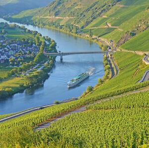 Mosel Kurzurlaub All-Inclusive + Weinprobe 3-8 Tage Hotel Fritz in Valwig Cochem