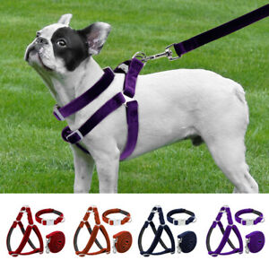 Small Large Dog Step In Harness&Collar&Leash Reflective Pet Velvet Walking Vest