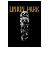 LINKIN PARK - SKULLS - FABRIC POSTER - 30x40 WALL HANGING - HFL1109