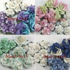 Color Variation - 15 Mix Paper Flower KIT Wedding bouquet Scrapbook Mar2/Set1
