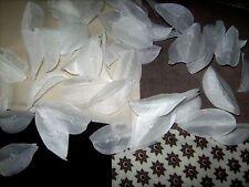 160 Blütenblätter in weiss Blüten 4 x 2,5 cm Hochzeit Deko