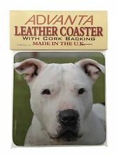 American Staffordshire Bull Terrier Dog Single Leather Photo Coaster , AD-SBT5SC