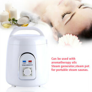 1.5-1.8L Steam Generator SPA Saunas Steamer Pot Bath with 60min Timer 220V 900W