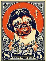 "Shepard Fairey Obey The Pug Art Amazing Silk Poster 13x20,20x30,24x36,32x48"""