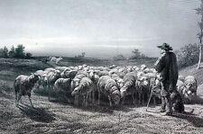 Rosa Bonheur 1888 THE SHEPHERD Sheep Flock Sheepman Herder Engraving Art Print