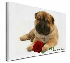 More details for shar-pei+rose 'love you mum' x-large 30