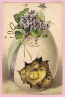 "Ca.1911 ""A Bright Easter"" w/ Violets, an Egg & 4 Chicks Holiday Postcard - 1158"