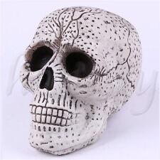 Simulate Human Skull Head Black Eyes Resin Halloween Haunt Stage Prop Decor 16cm