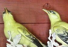 Karl Ens German Porcelain  Bird Figurine Yellow Oriole  green Windmill mark Pair